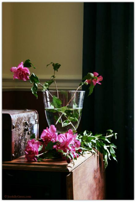 Rose of Sharon Vase 2 © Joyfully Green LLC