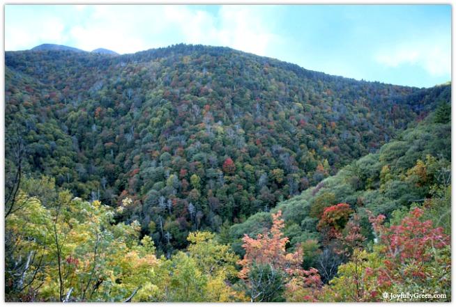 Catskills Mountain-Clouds 4076 © Joyfully Green LLC