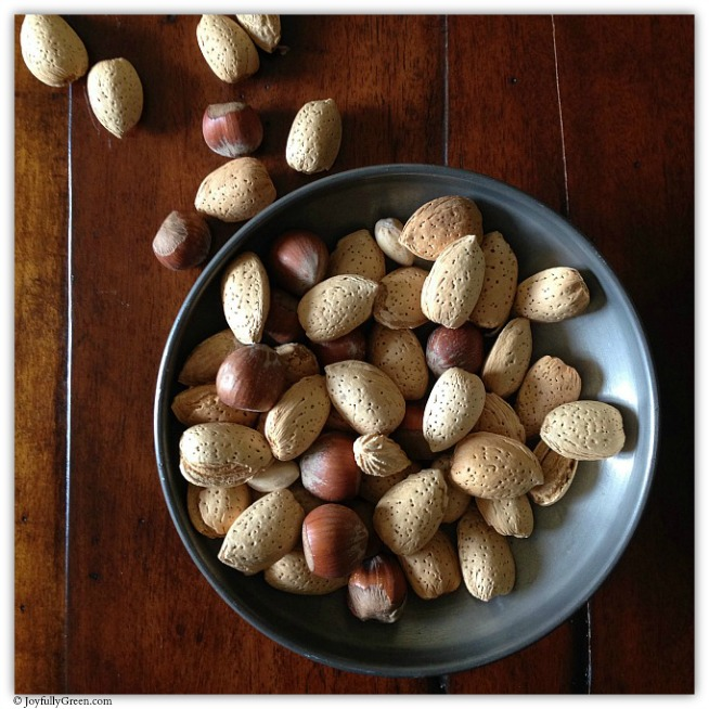 Mixed Nuts © Joyfully Green LLC