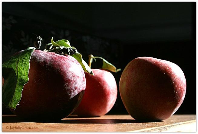 Apples resized © Joy Sussman Joyfully Green LLC