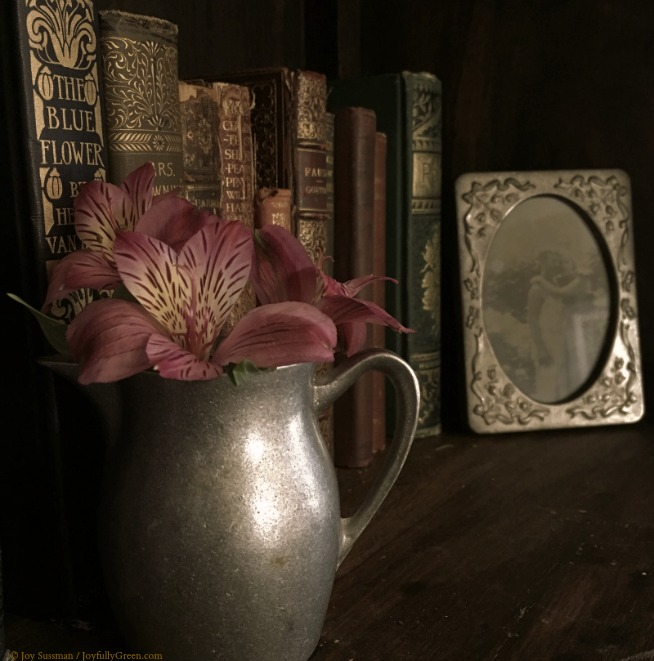 Old Books 5 © Joy Sussman Joyfully Green LLC