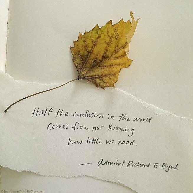 Leaf and Byrd © Joy Sussman Joyfully Green LLC
