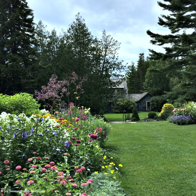Maine Thuya Gardens © Joy Sussman Joyfully Green LLC