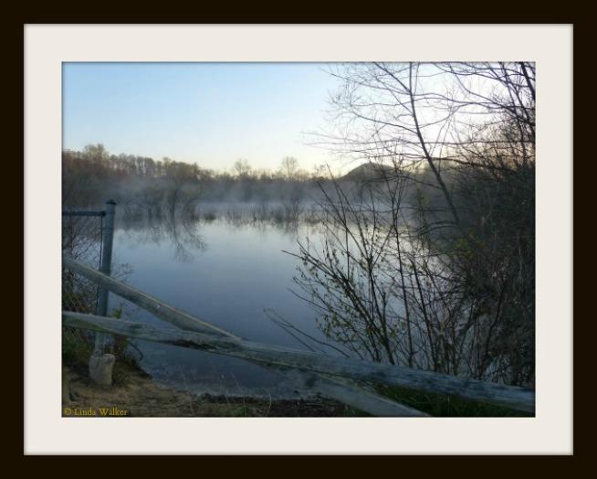 LindaWalker-FRAMED2-NaturePhotography-P1100205