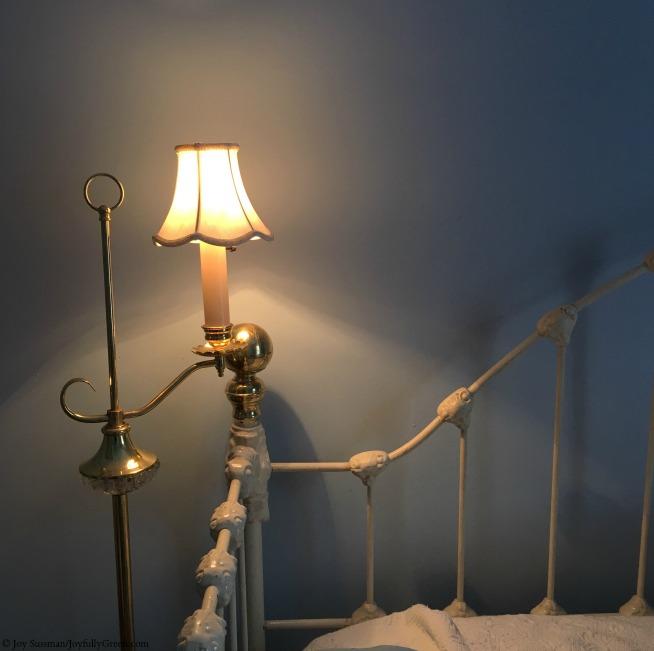 Reading Light © Joy Sussman - Joyfully Green LLC