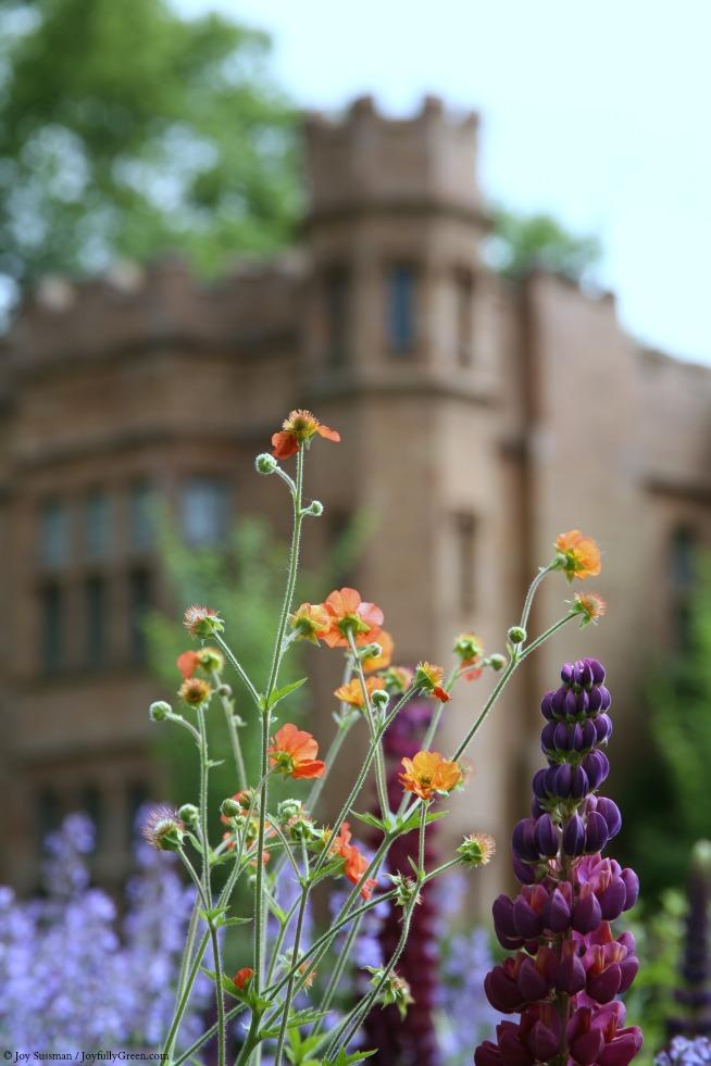 Mansion Gardens © Joy Sussman - Joyfully Green LLC