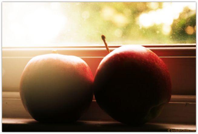 Apples in Sunglow © Joy Sussman