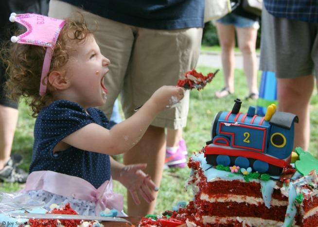 Party Cake © Joy Sussman - Joyfully Green LLC
