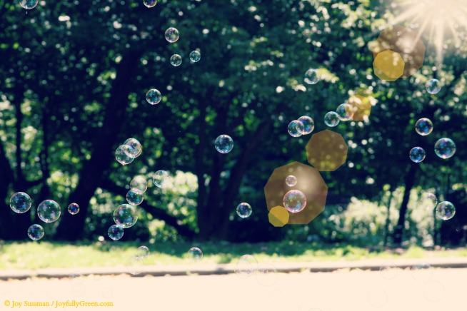 Bubbles © Joy Sussman - Joyfully Green LLC