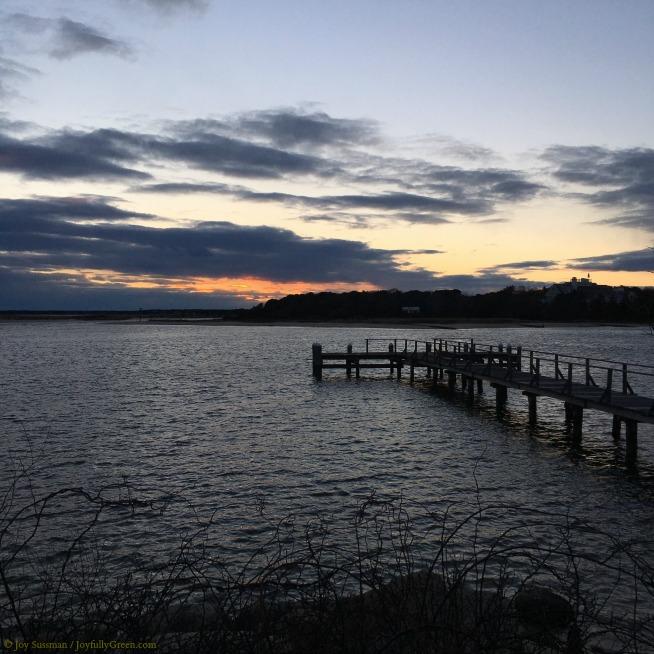 Cape Cod Night © Joy Sussman - Joyfully Green LLC