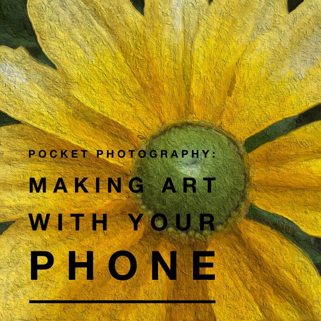 Pocket Photography 654 © Joy Sussman - Joyfully Green LLC