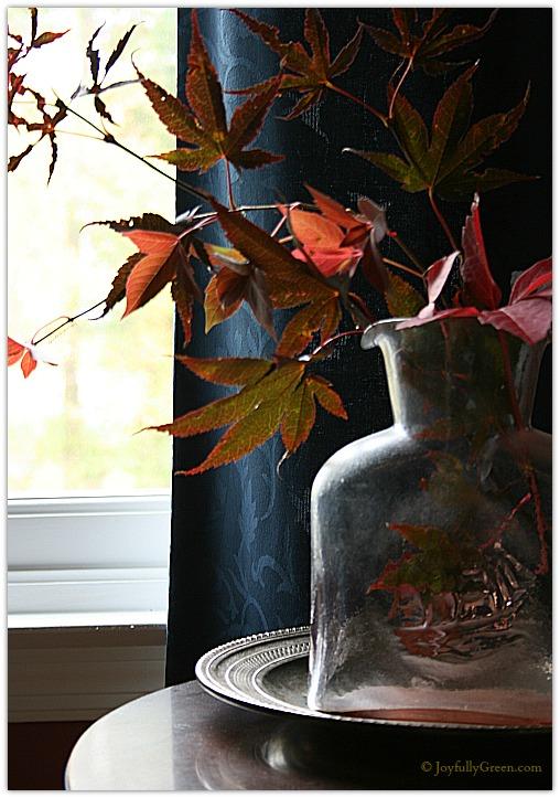 Japanese Maple Bouquet © Joyfully Green