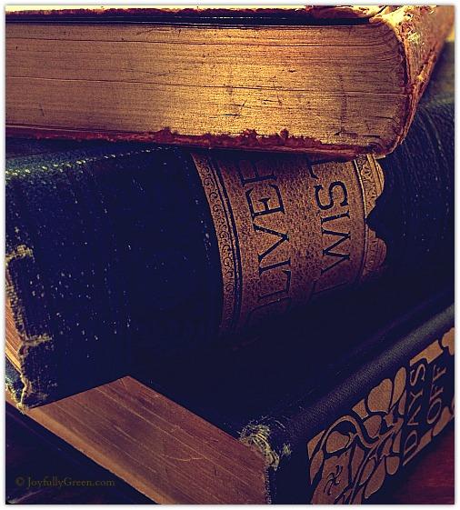 AntiqueBooks by Joyfully Green