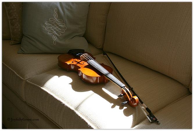 Violin by Joyfully Green LLC