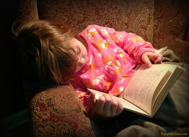 Reading Chair 2 © Joyfully Green LLC