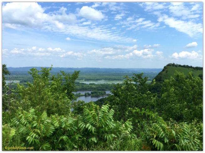 Mississippi River © Joyfully Green LLC