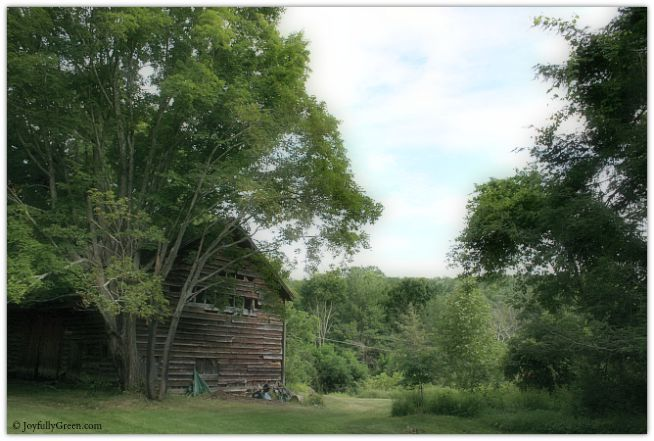 Barn in Countryside © Joyfully Green LLC