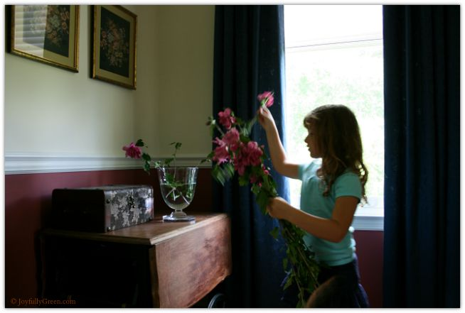 C Rose of Sharon © Joyfully Green LLC