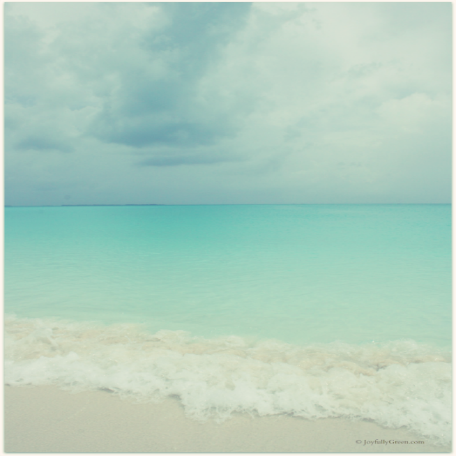 Bahamas Beach © Joyfully Green LLC