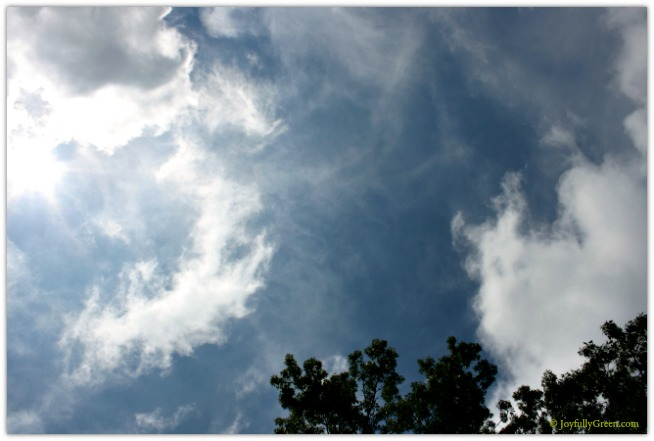 Clouds © Joyfully Green LLC