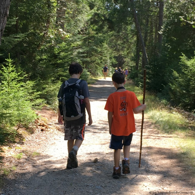 Maine Hiking © Joy Sussman Joyfully Green LLC