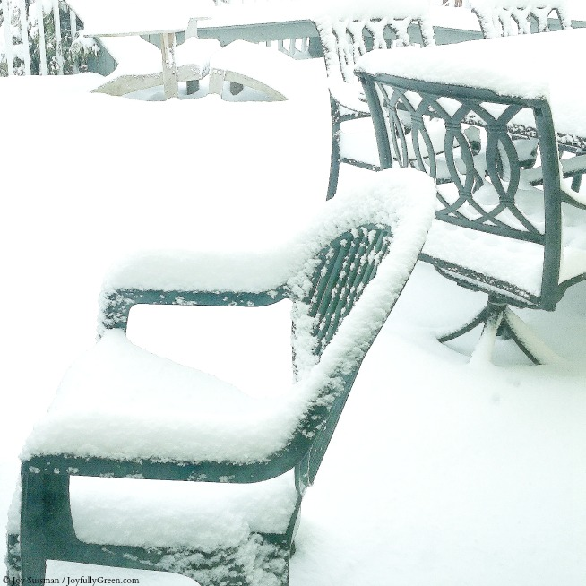 Snow on Chairs © Joy Sussman - Joyfully Green LLC