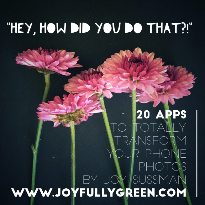 20 Apps Guide © Joy Sussman - Joyfully Green LLC - 654