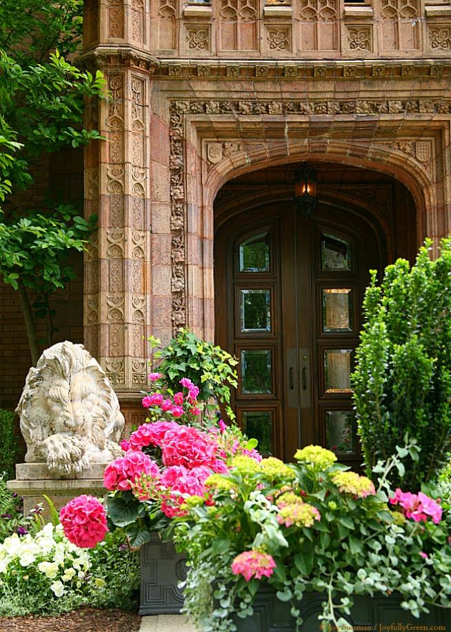 Lion at Mansion © Joy Sussman - Joyfully Green LLC