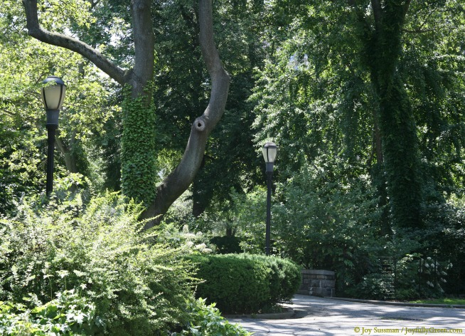NYC Park © Joy Sussman - Joyfully Green LLC