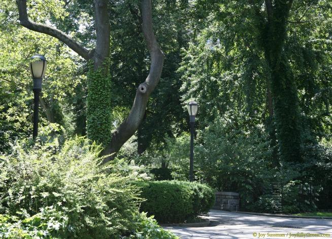 NYC Park © Joy Sussman - Joyfully Green LLC
