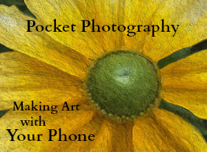 PocketPhotographybyJoySussman