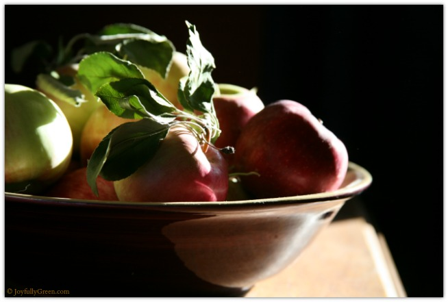 Apples 4307 © Joyfully Green LLC