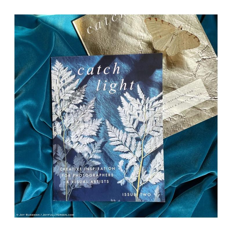 Catch Light Issue Two © Joy Sussman